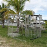 Cozumel shark cages